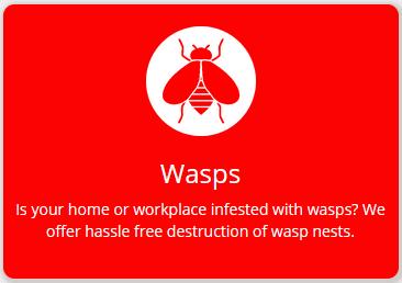 wasp-fs8